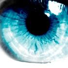 על נפלאות העין והראיה - חלק א'