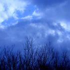 מזג האוויר וכאבי פרקים