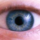 גלאוקומה: הגנב השקט של הראיה
