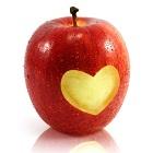 קרדיומיופתיה: כל מה שצריך לדעת על מחלות שריר הלב
