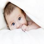 איכות העוברים בטיפולי IVF