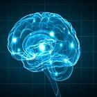 אפילפסיה: טיפול לא תרופתי בעזרת נוירופידבק